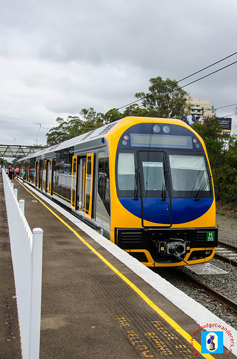 H55 at Rosehill Gardens Racecourse Station.