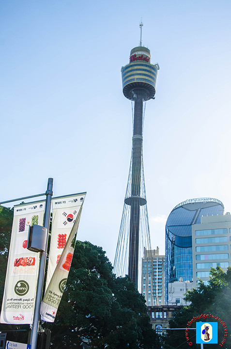 Sydney Tower is one of the city's main attractions.