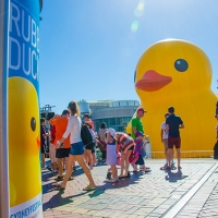 Giant Rubber Duck Kicks Off Sydney Festival 2013