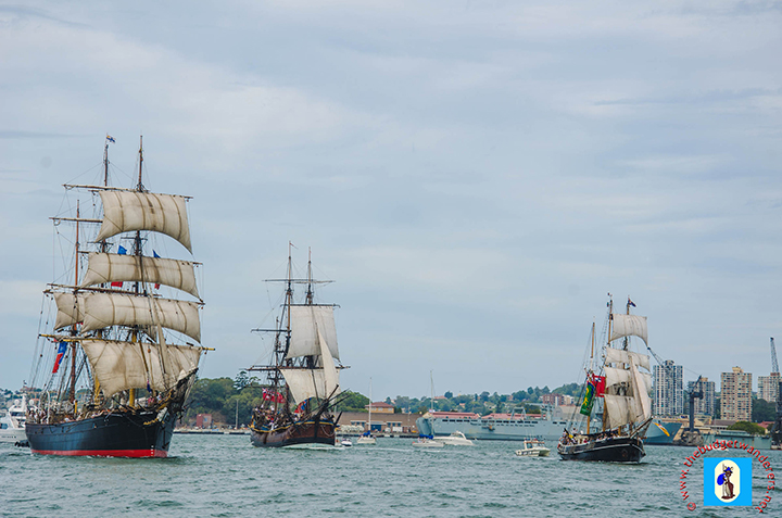 Tall Ships race in Sydney Harbour.