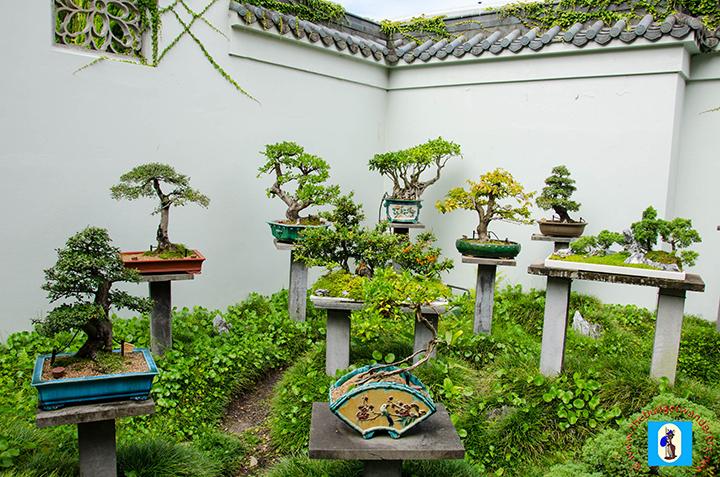 Penjing Courtyard