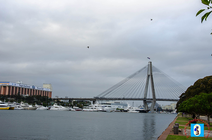 View of ANZAC Bridge from Bicentennial Park - Glebe.