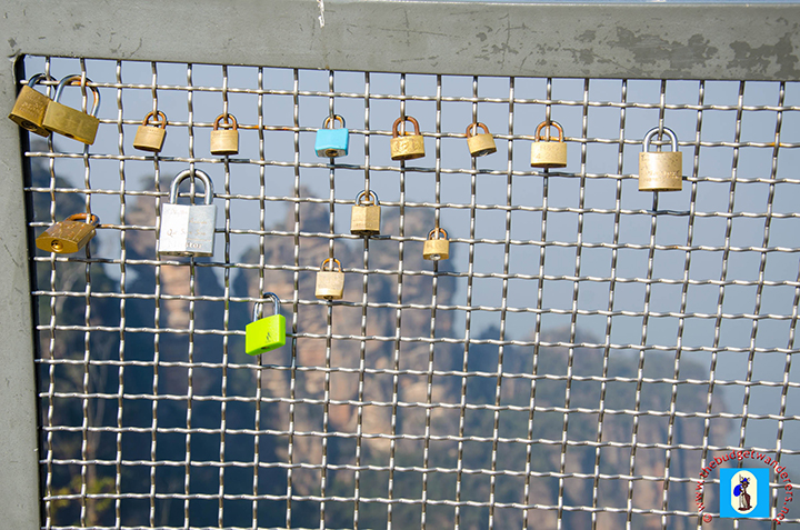 Padlocks attached to the fence of the viewing deck.
