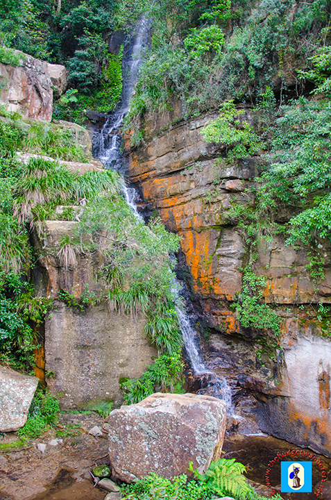 A view of the waterfall near Dombarton on the up hill run to Summit Tank on the Moss Vale to Unanderra Line.