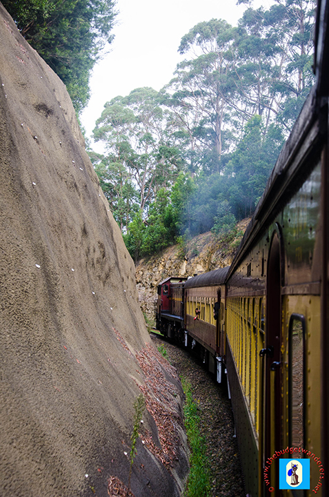A view of the train consist on the run uphill to Summit Tank on the Unanderra – Moss Vale line.