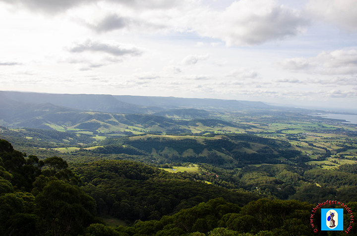 A view of the Illawara region from atop the Illawarra Fly Treetop Walk.