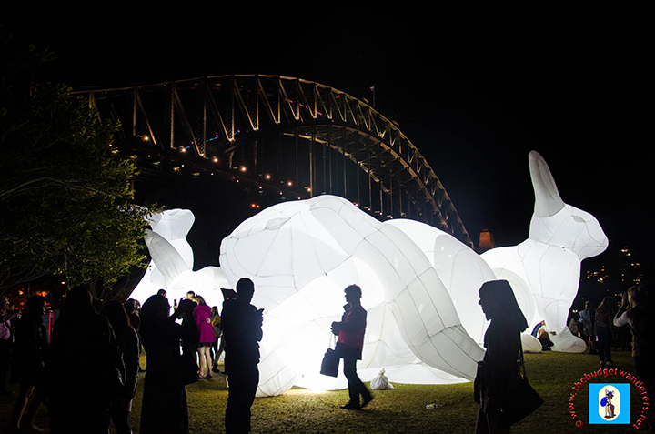 Massive displays were illuminated against a backdrop of the Sydney Harbour Bridge.