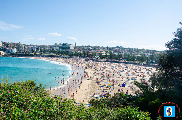 Coogee Beach from a cliff top.