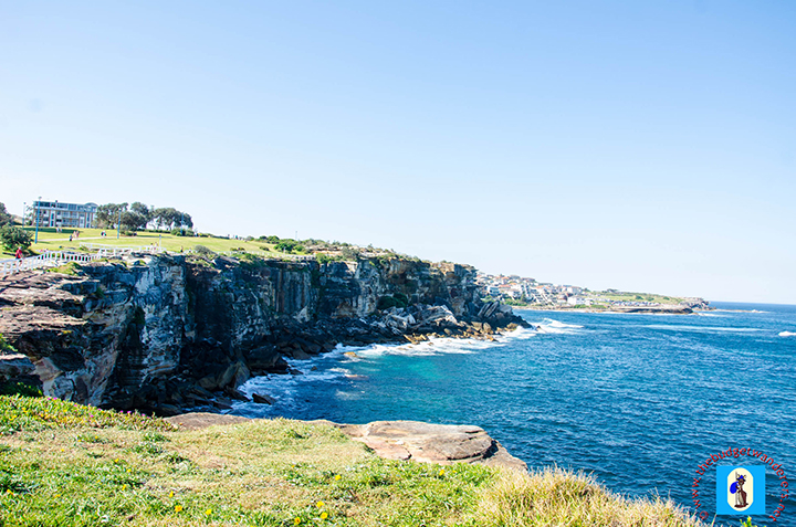 A glimpse of the cliff tops surrounding Coogee Beach.