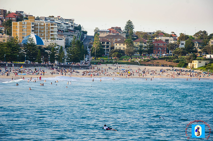 Coogee Beach is packed with people during sweltering heat.