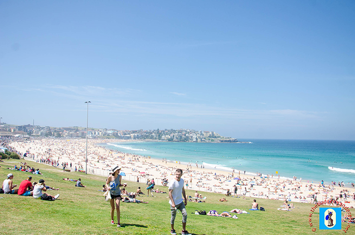 The famous beach of Bondi is home to the event in NSW.